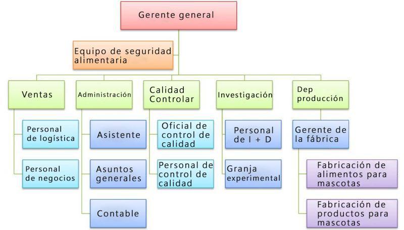 organization-structure